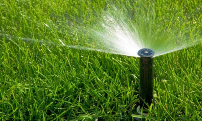 Watering the Lawn Best Practices | Hittle Landscaping