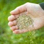 Don't Wait Until Spring   Hittle Landscaping