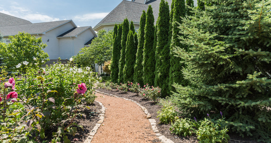 Walking path with stone edging and softscapes | Hittle Landscaping