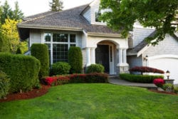 Keep Your Lawn Alive in a Drought | Hittle Landscaping