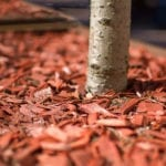 Benefits of Mulch | Hittle Landscaping