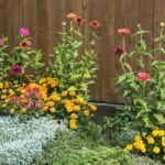3 Things Your Flowerbeds Need Before Winter Weather | Hittle Landscaping