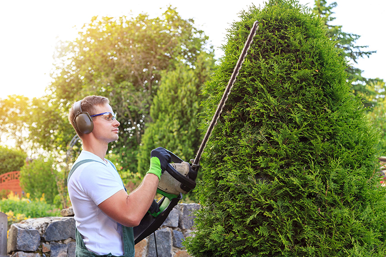 Professional landscaper trimming hedges | Hittle Landscaping