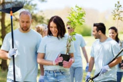 group landscaping project | Beautify Community with Landscaping Projects | Hittle Landscaping